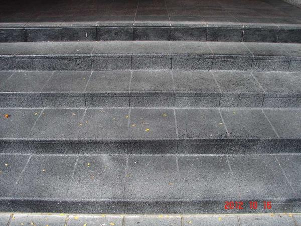 Decorative Coatings on Concrete Steps